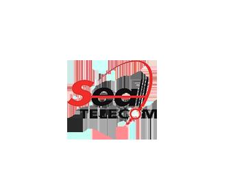 Logo cliente Seal Telecom